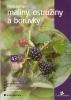 Pěstujeme maliny, ostružiny a boruvky, 2003