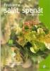 Pěstujeme salát, špenát a další listové zeleniny, 2002